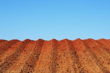 texture of plowed field and blue sky Standard-Bild - 131221413