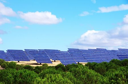 panels photovoltaic park and green pine trees Standard-Bild - 131221425