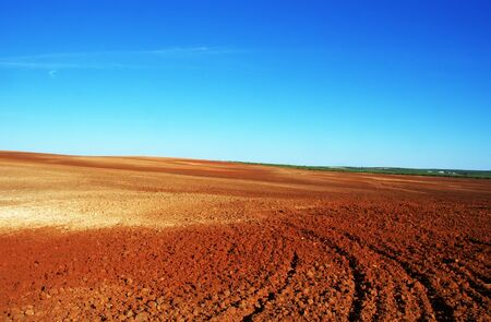 Plowed field in the Alentejo plain of Portugal Standard-Bild - 131221427