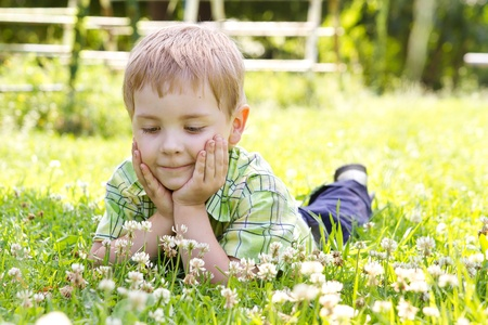 Little boy lying in clover flower field, hands under the cheeks Sunny summer, spring day photo