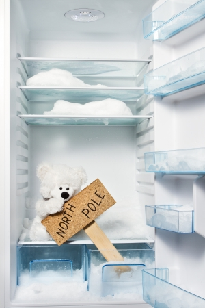 floe: Polar bear in refrigerator with North Pole sign. Global warming problem