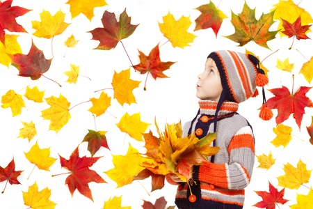 Child in autumn leaves. Maple fall over white photo