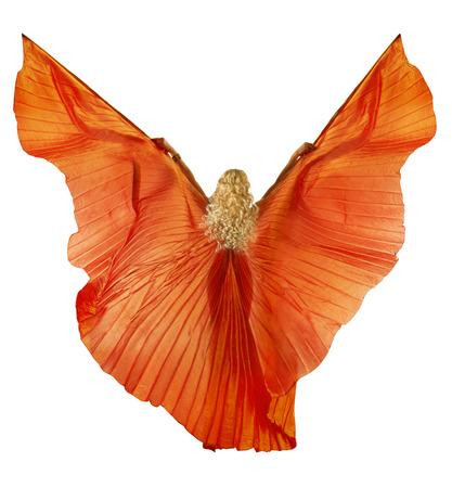 bailarines silueta: Mujer en traje de tela de la danza del vientre como alas. Volver la vista lateral. Aislado