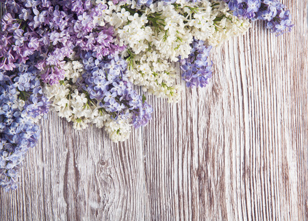 lilac flowers on wood background, blossom branch on vintage wooden texture  photo