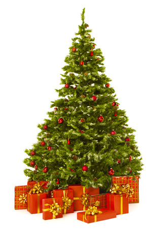Christmas tree and red present gift box, Xmas firtree  isolated white background