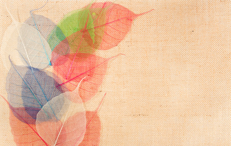 background canvas: sackcloth burlap background canvas cloth texture with color leaves  decor