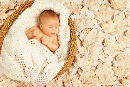recien nacido: Sueño del bebé en hojas de otoño, recién nacido del niño dormido en el fondo decorado, recién nacido un mes de edad Foto de archivo