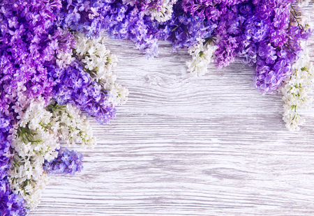 Lilac Flower Background, Blooms Pink Flowers on Wood Plank Foto de archivo