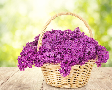 lilac flowers: Lilac Flowers Blooming Bouquet Basket Wooden Table