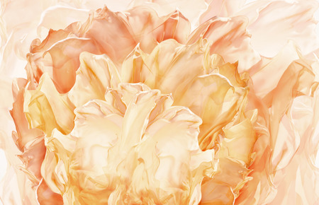 color design: Abstract Fabric Flower Background, Artistic Floral Waving Cloth, Petal pattern Stock Photo