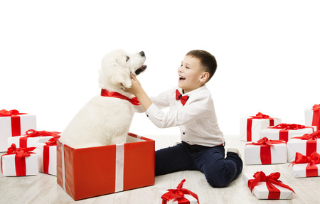 Dog Present and Child, Happy Kid Boy with White Animal Pet in Gift Box, Isolated on White Background