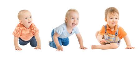 Neonati maschi, gattonando e seduti, gruppo di bambini neonati, bambini piccoli isolati su sfondo bianco, un anno di età
