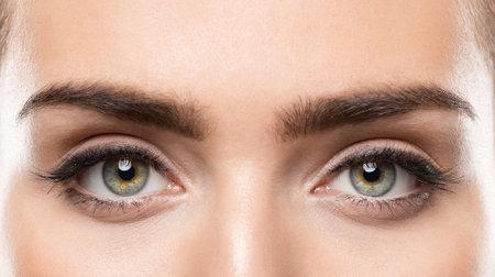 Woman Eyes Close up. Natural Beauty Eye Eyebrow long Eyelashes Make up. Open Eyes looking at Camera