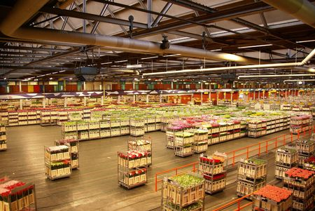 world market: flower auction Stock Photo