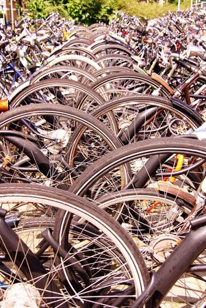 Front wheels of bicycles photo