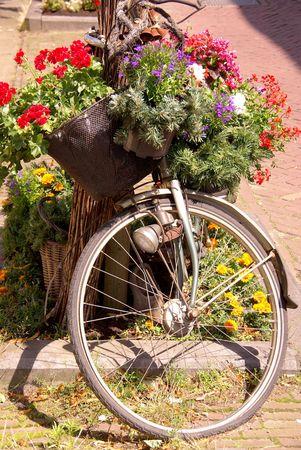 decorated bike: Un decorato con fiori bicicletta