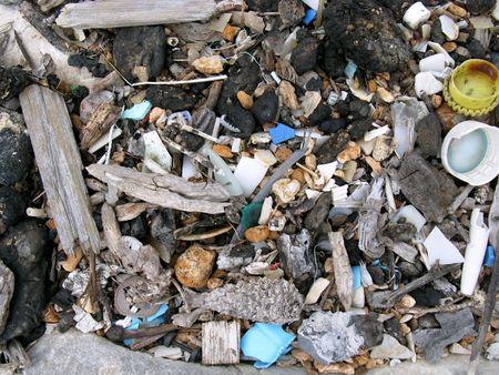 Litter at the coastline of the Adriatic sea Stock Photo - 4041708