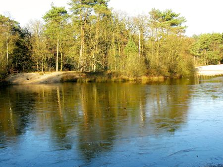 lochs: A frozen pool in a park