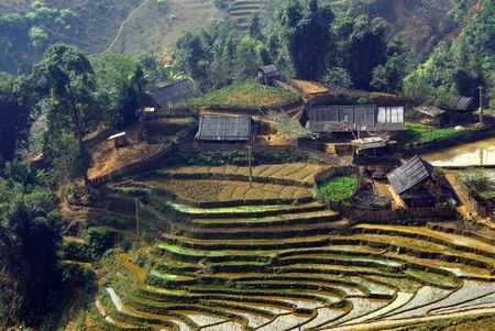 gradas: Control de agua en las terrazas para el cultivo de arroz Foto de archivo