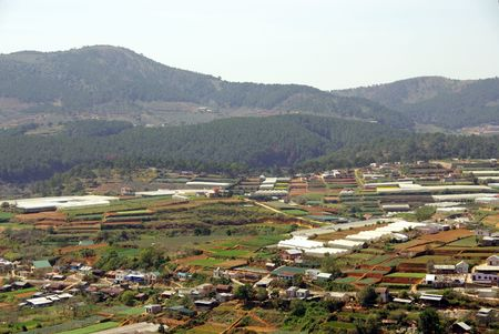 Agriculture near Dalat in Vietnam Stock Photo