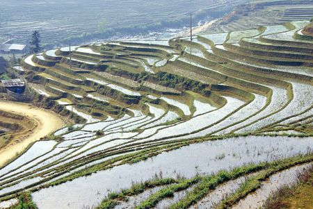 The rice terraces near Sapa in Vietnam Фото со стока