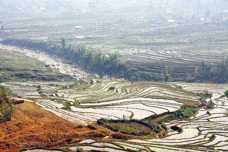 The rice terraces near Sapa in Vietnam Stock Photo - 4317470