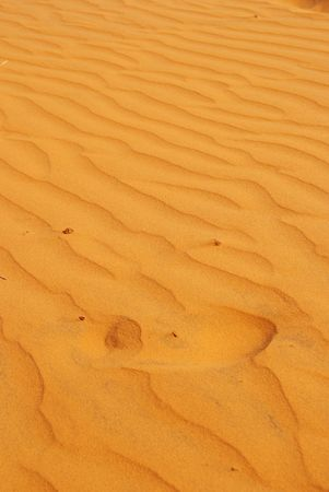 Patterns in the sand of the red dunes of Mui Ne in Vietnam Stock Photo - 5877451