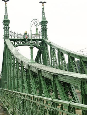 The bridge of liberty in Budapest in Hungary