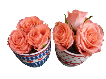 Two mugs with hearts filled with roses Stock Photo - 8687747
