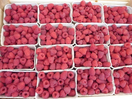 Raspberries in boxes at a fruit market in Summer Stock Photo - 11070863
