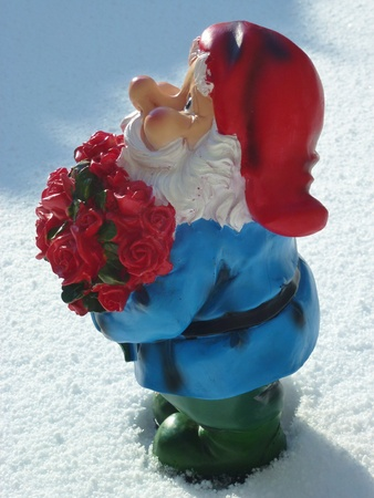 kobold: A garden gnome with a bunch red roses in the snow for Valentines day Stock Photo