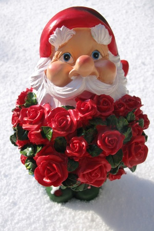 A garden gnome with a bunch red roses in the snow for Valentines day photo