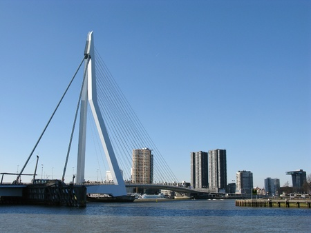 Skyscrapers and the Erasmus bridge along the river Meuse in Rotterdam Stock Photo - 12329503