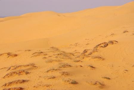 The red Dunes of Qui Ne in Vietnam Stock Photo - 12327300