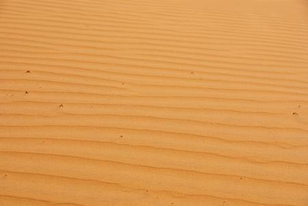 The red dunes of Mui Ne in Vietnam photo