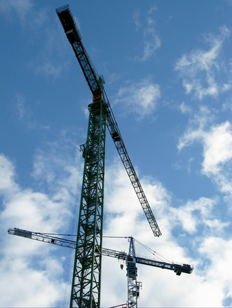 cirrostratus: Cranes opposite a blue sky with cirrostratus clouds