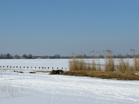 plassen: Ice and snow on a lake in the Netherlands Stock Photo