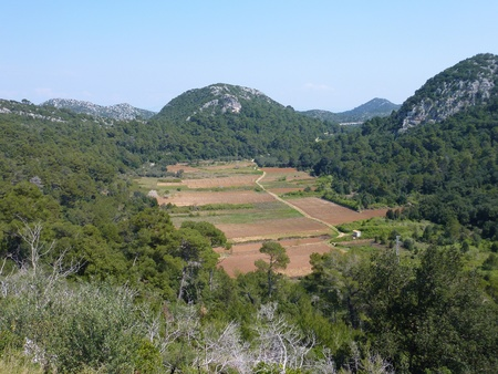 Small scale agriculture at the Croatian island Lastovo Stock Photo - 12327389