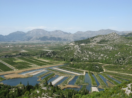Agriculture in the delta of the Neretva river in Croatia photo