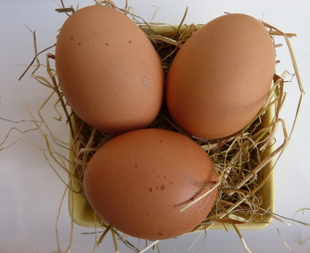 Eggs on hay in a bowl photo