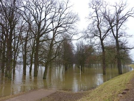 inflow: High water in the river IJssel in Deventer Stock Photo
