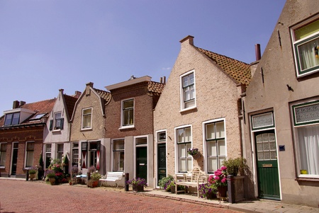 Scenic houses and a street garden with flowering plants photo