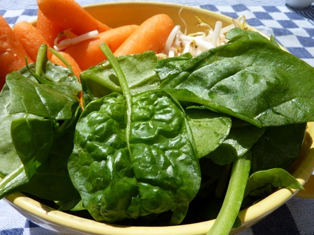 Carrots spinach and mung bean sprouts in a bowl Stock Photo - 12506247