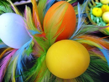 An Easter table decoration Фото со стока