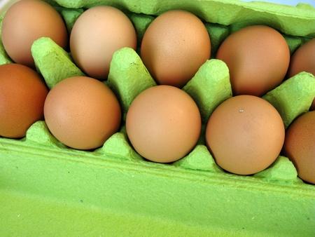 Eggs in a green carton photo