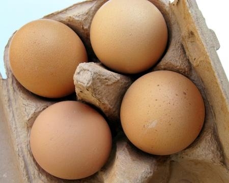 Eggs in a brown carton photo