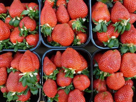Strawberries in boxes at the greengrocer Stock Photo - 12957642