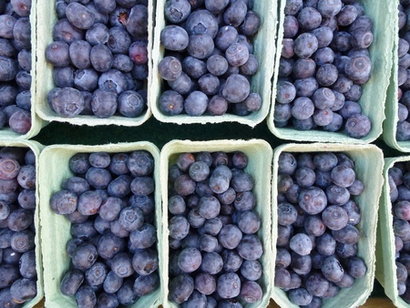 Blueberries in boxes at the greengrocer on the market place photo