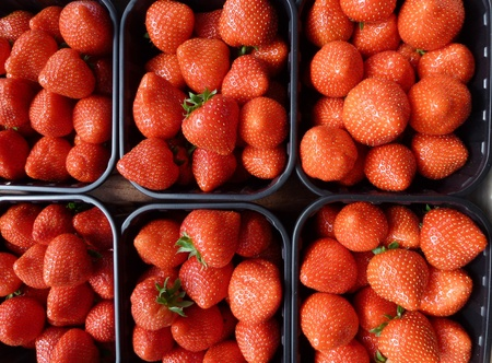 Strawberries in boxes at the greengrocer on the market photo