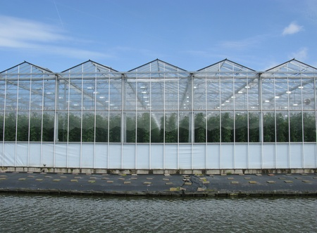 Glass houses with tomato plants along a canal Stock Photo